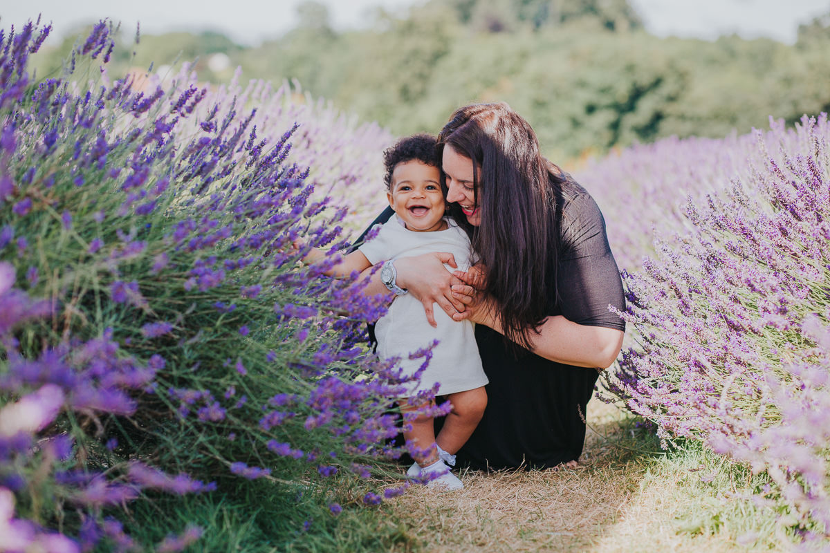 colourful lavender field family photo